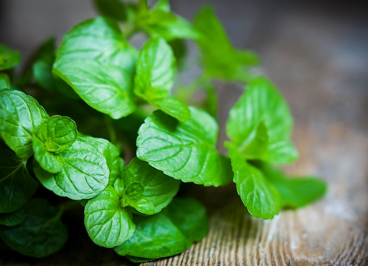 Peppermint isn't just great at Christmas, It is also a fantastic scent for a quick pick-me-up